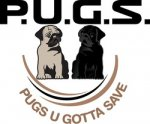 Donate in Memory of a Pug or Other Individual